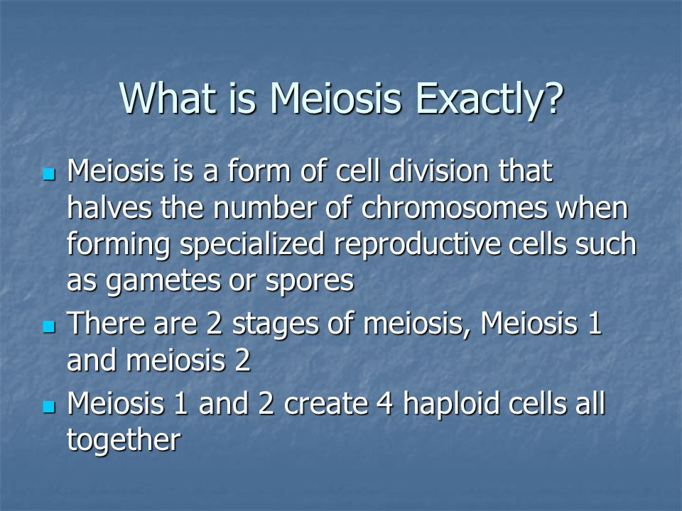 What is Meiosis Exactly? Meiosis is a form of cell division that ...