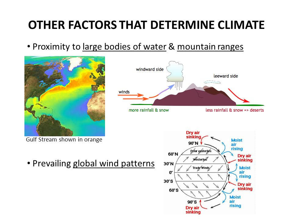 OTHER FACTORS THAT DETERMINE CLIMATE Proximity to large bodies of water & mountain ranges Prevailing global wind patterns Gulf Stream shown in orange