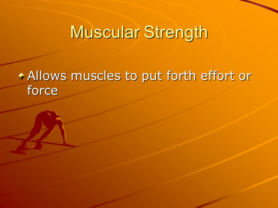 Muscular Strength Allows muscles to put forth effort or force