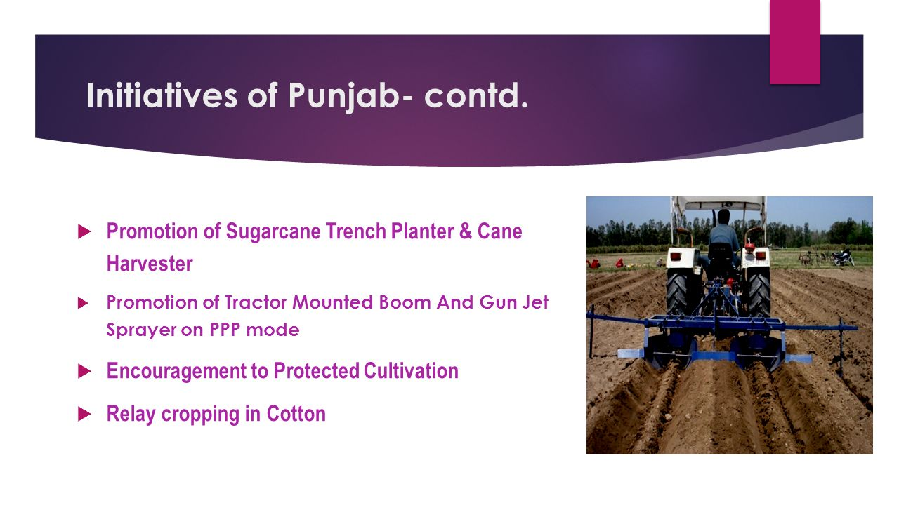 Initiatives of Punjab  Crop Diversification-Promoting alternate crops like Maize and Cotton  Increasing area under summer Moong  More coverage under Bt Cotton & mechanical picking  Water saving in Rice cultivation through raised beds and Direct Sown Rice (DSR)