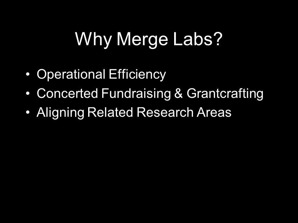 Why Merge Labs.
