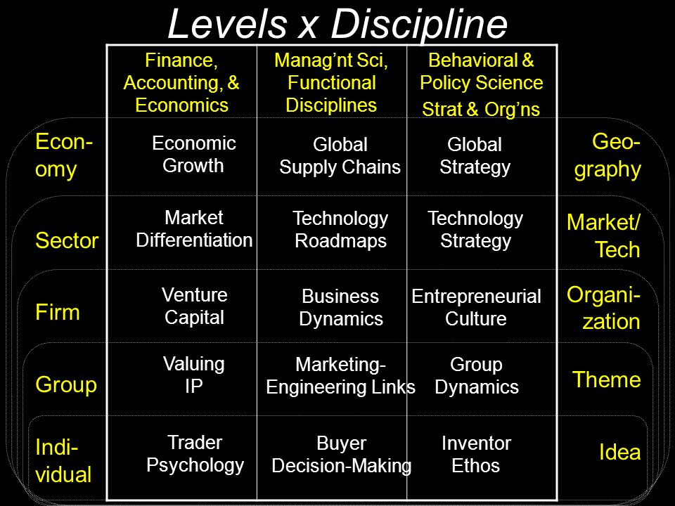 Levels x Discipline Econ- omy Sector Firm Group Indi- vidual Geo- graphy Market/ Tech Organi- zation Theme Idea Finance, Accounting, & Economics Manag'nt Sci, Functional Disciplines Behavioral & Policy Science Strat & Org'ns Economic Growth Market Differentiation Venture Capital Valuing IP Trader Psychology Global Supply Chains Technology Roadmaps Business Dynamics Marketing- Engineering Links Buyer Decision-Making Global Strategy Technology Strategy Entrepreneurial Culture Group Dynamics Inventor Ethos