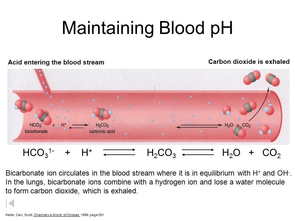 bicarbonaat water