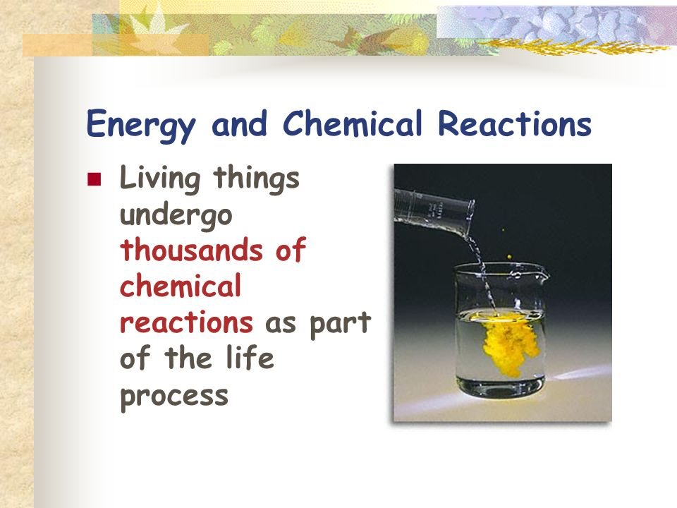 Energy and Chemical Reactions Living things undergo thousands of chemical reactions as part of the life process