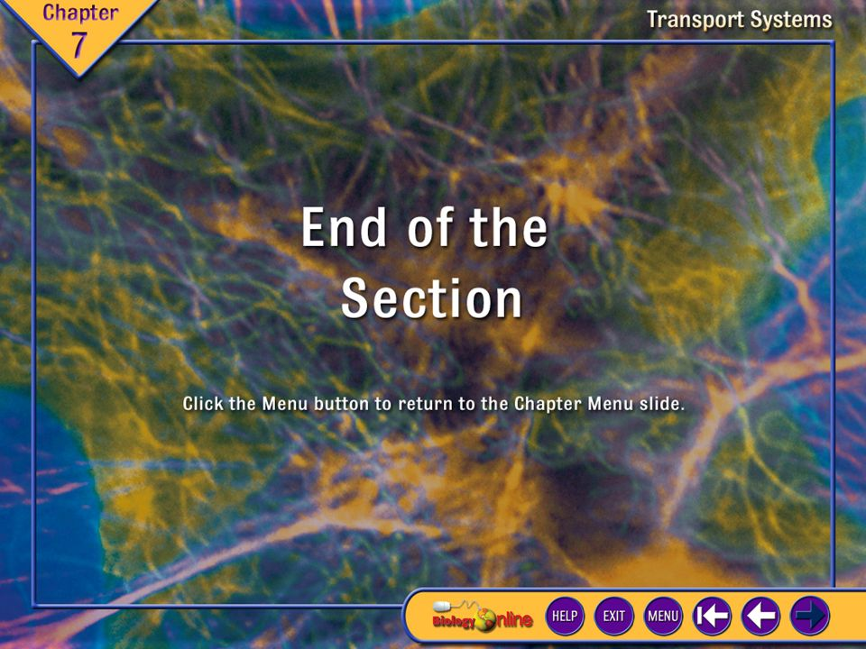 Chapter Introduction 2 Transport Systems Complex multicellular organisms, such as most land plants and animals, cannot eliminate wastes by diffusion and active transport through their surfaces.