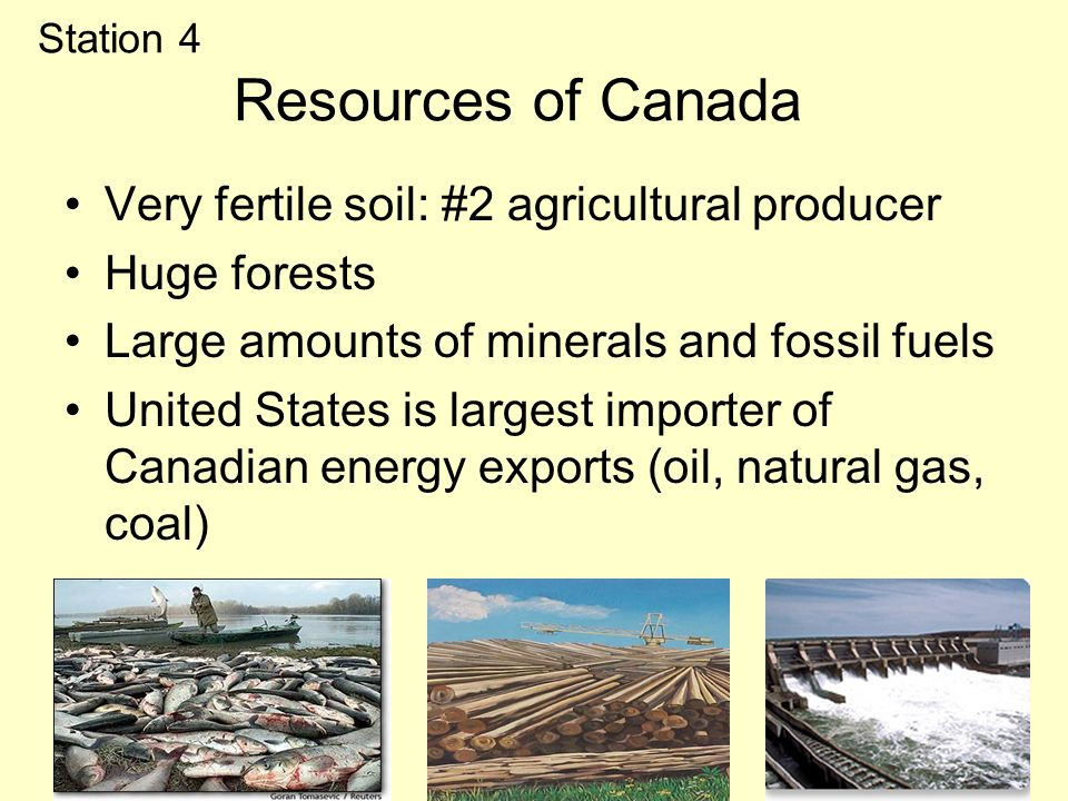 Station 4 Resources of Canada Very fertile soil: #2 agricultural producer Huge forests Large amounts of minerals and fossil fuels United States is largest importer of Canadian energy exports (oil, natural gas, coal)
