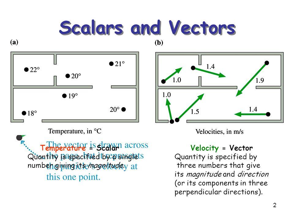 IB Physics Notes - 1.3 Vectors and scalars