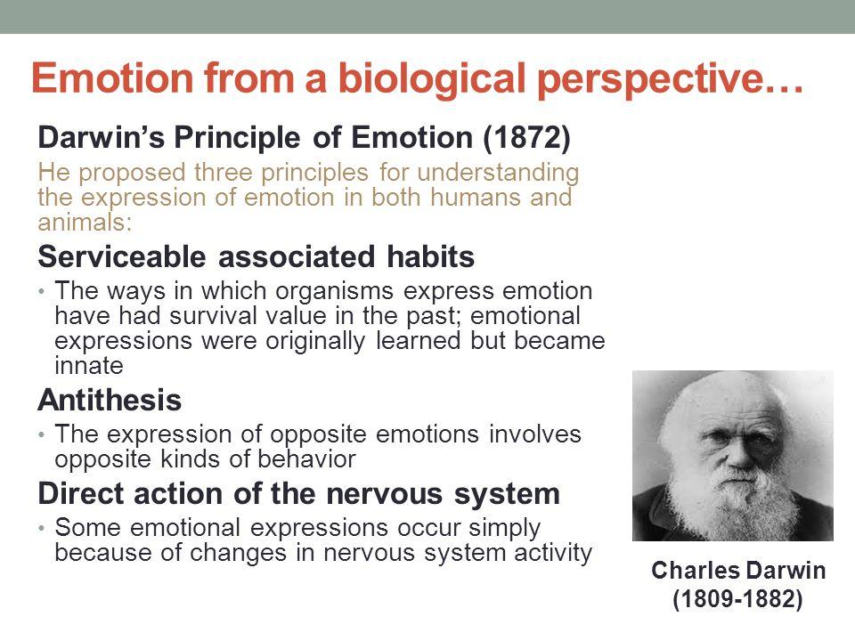 express emotions + essay