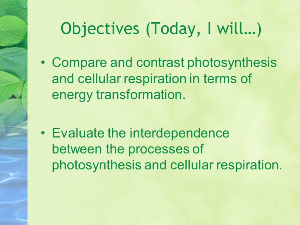 compare and contrast photosynthesis and respiration essay Essay about compare photosynthesis and cellular respiration reactions also generate atp by using compare and contrast chemiosmosis in respiration and.