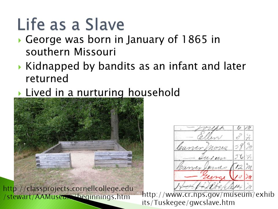  George was born in January of 1865 in southern Missouri  Kidnapped by bandits as an infant and later returned  Lived in a nurturing household   its/Tuskegee/gwcslave.htm   /stewart/AAMuseum/beginnings.htm