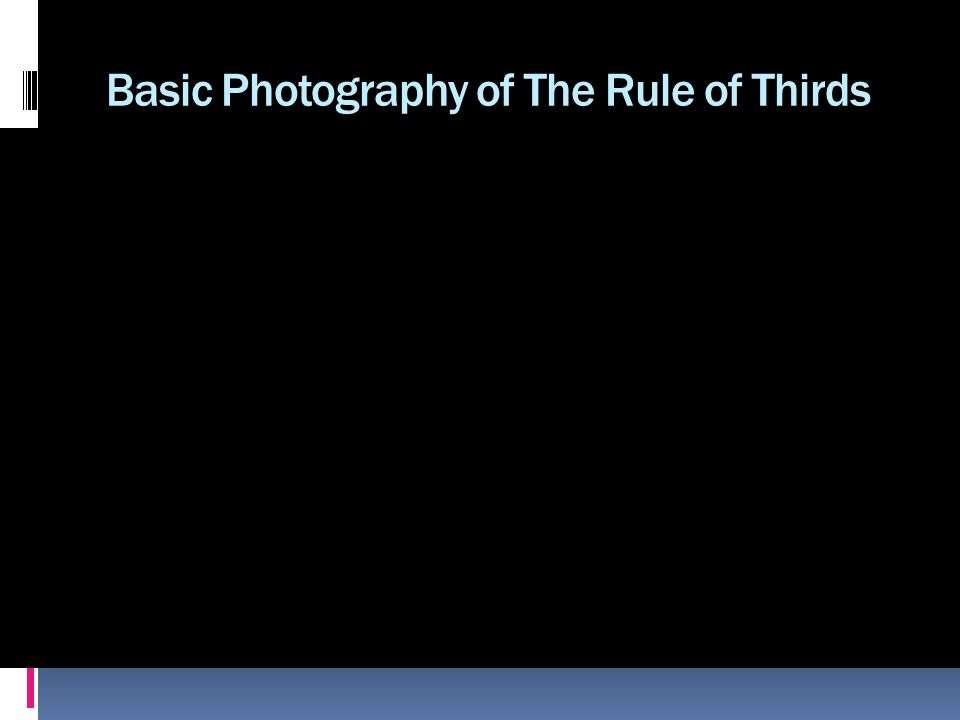 Basic Photography of The Rule of Thirds