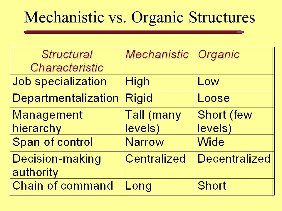 Mechanistic vs. Organic Structures