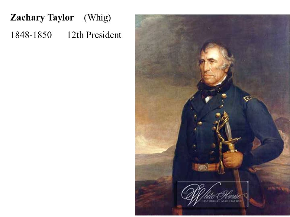 Zachary Taylor (Whig) th President