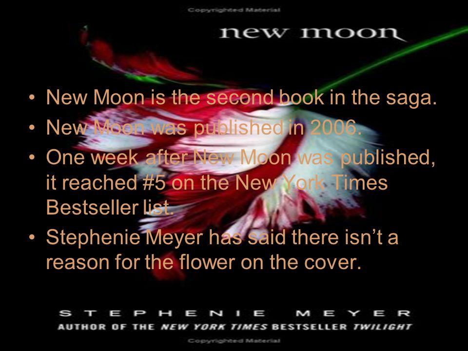 stephenie meyer new book bree