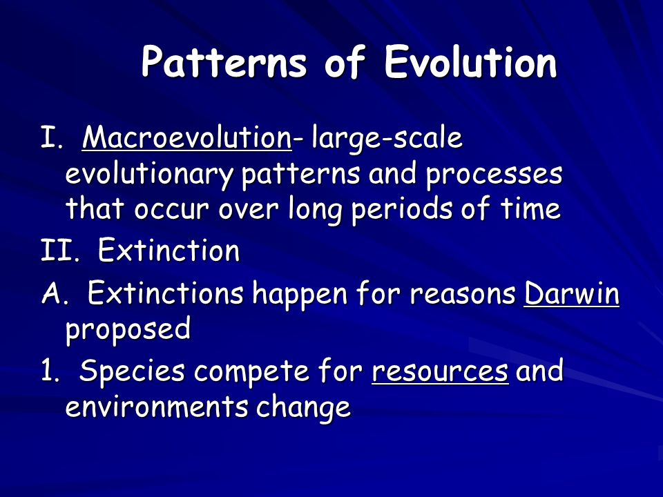 What is the difference between a process and a pattern of evolution?