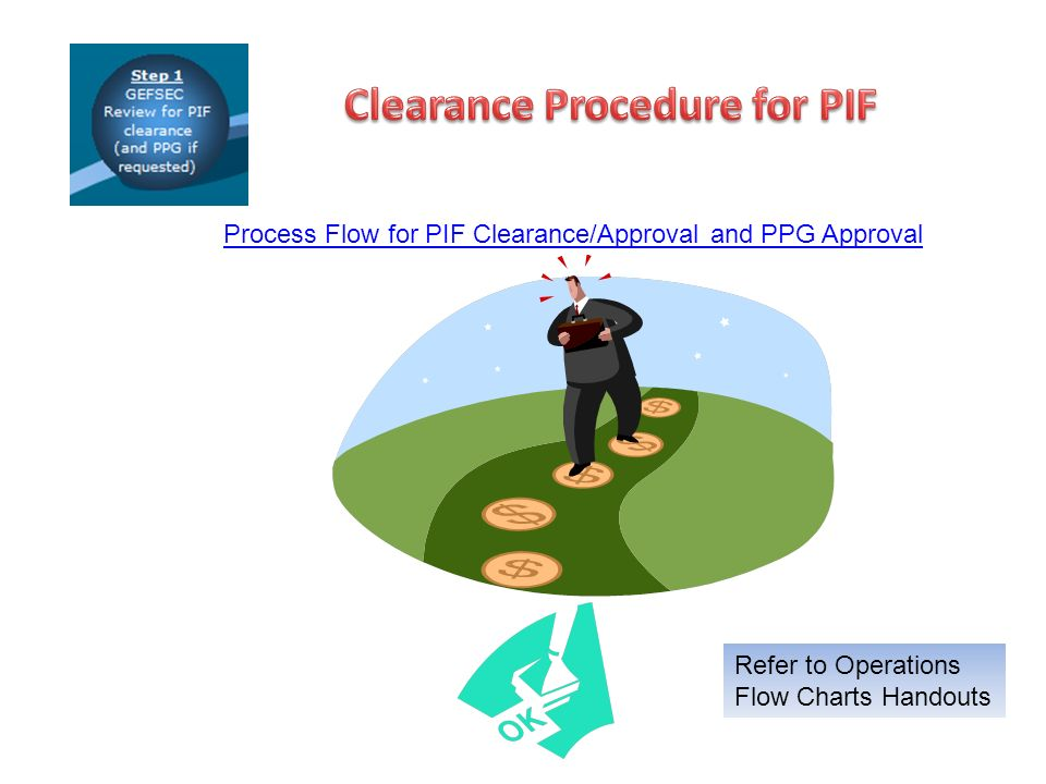 Process Flow for PIF Clearance/Approval and PPG Approval Refer to Operations Flow Charts Handouts