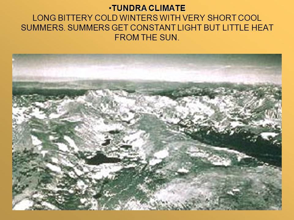 TUNDRA CLIMATETUNDRA CLIMATE LONG BITTERY COLD WINTERS WITH VERY SHORT COOL SUMMERS.