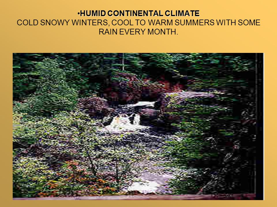 HUMID CONTINENTAL CLIMATEHUMID CONTINENTAL CLIMATE COLD SNOWY WINTERS, COOL TO WARM SUMMERS WITH SOME RAIN EVERY MONTH.