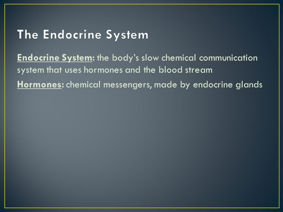 Endocrine System: the body's slow chemical communication system that uses hormones and the blood stream Hormones: chemical messengers, made by endocrine glands