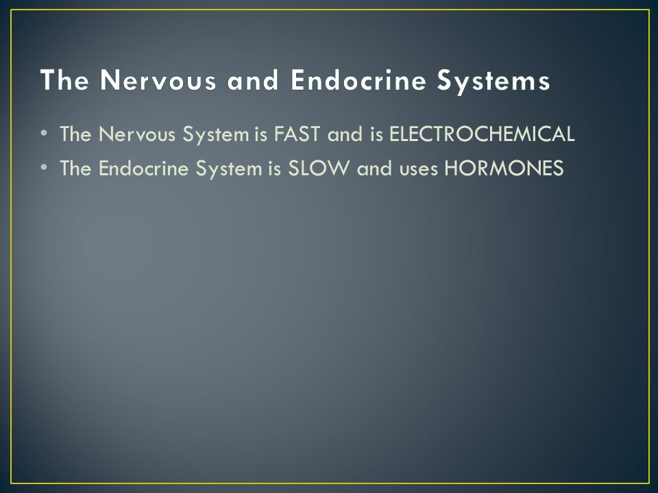 The Nervous System is FAST and is ELECTROCHEMICAL The Endocrine System is SLOW and uses HORMONES