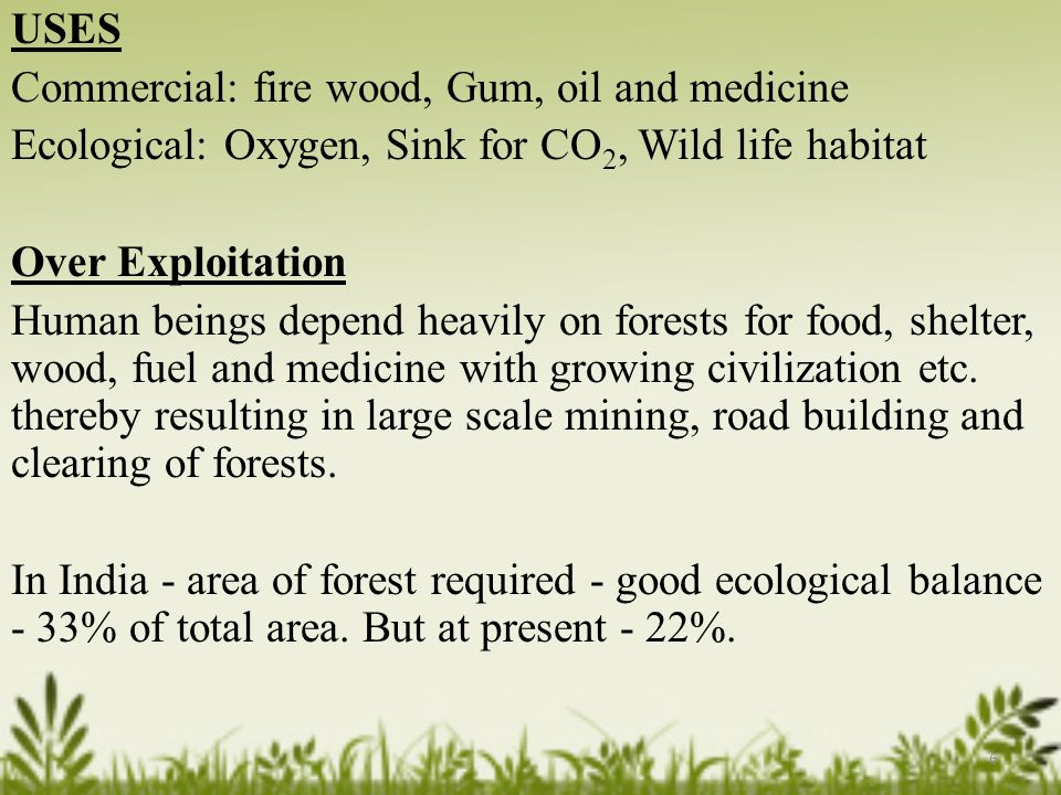 USES Commercial: fire wood, Gum, oil and medicine Ecological: Oxygen, Sink for CO 2, Wild life habitat Over Exploitation Human beings depend heavily on forests for food, shelter, wood, fuel and medicine with growing civilization etc.