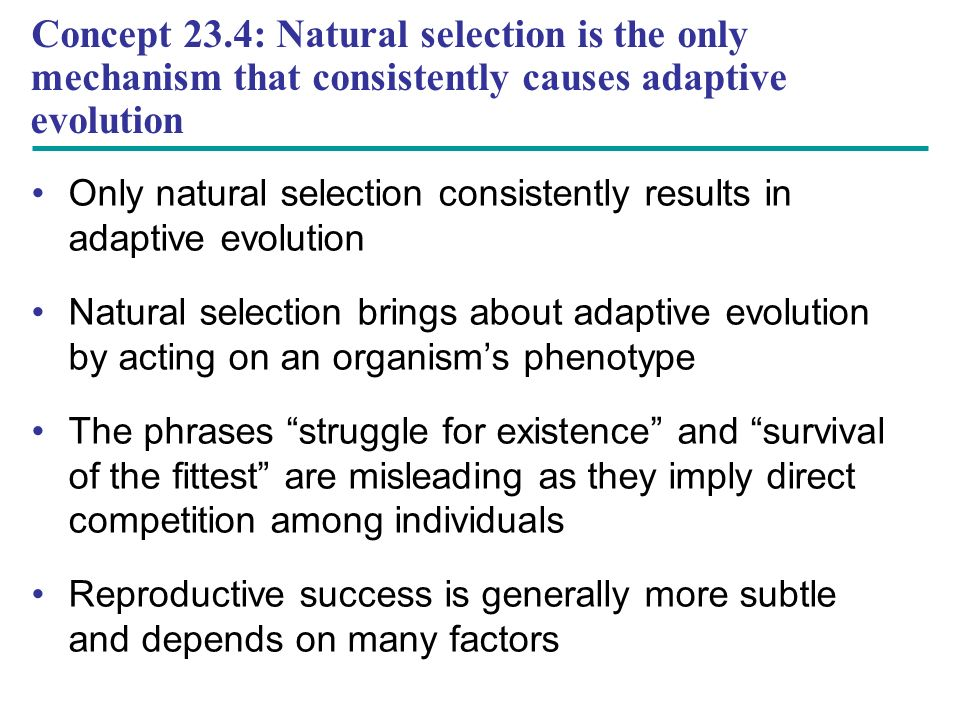 Only natural selection consistently results in adaptive evolution Natural selection brings about adaptive evolution by acting on an organism's phenotype The phrases struggle for existence and survival of the fittest are misleading as they imply direct competition among individuals Reproductive success is generally more subtle and depends on many factors Concept 23.4: Natural selection is the only mechanism that consistently causes adaptive evolution