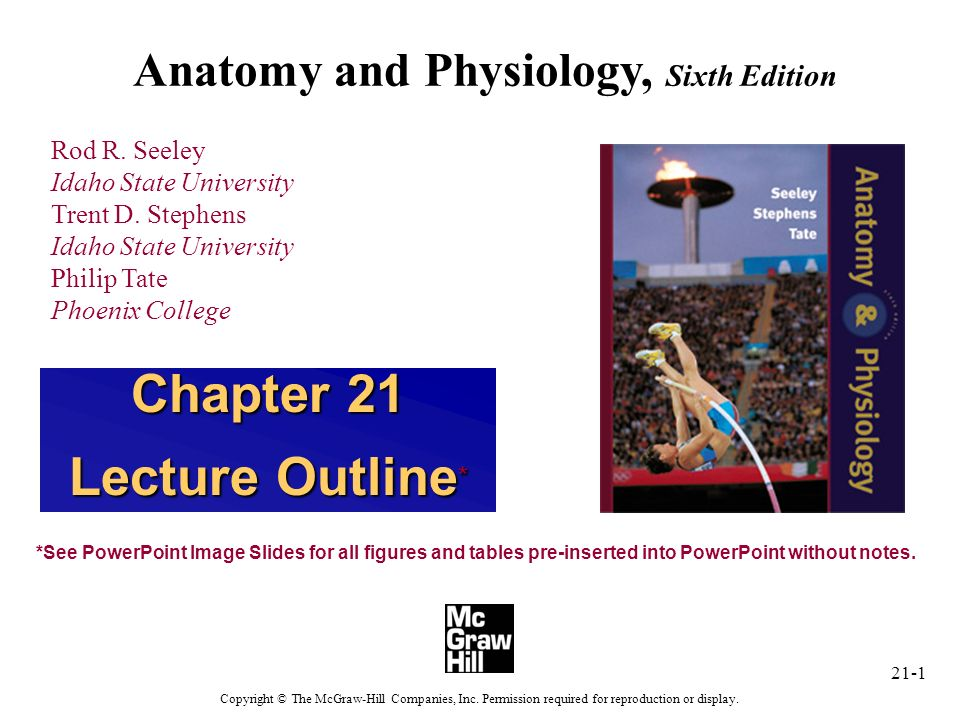 Contemporáneo Anatomy And Physiology Seeley Stephens Tate 7th ...