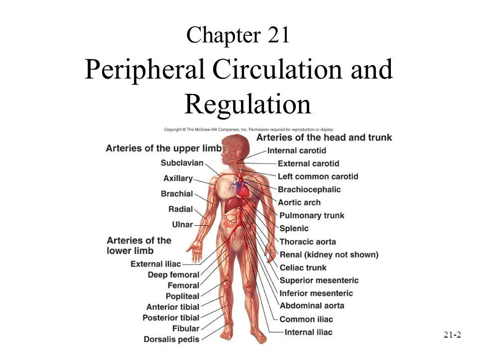 21-1 Anatomy and Physiology, Sixth Edition Rod R. Seeley Idaho State ...