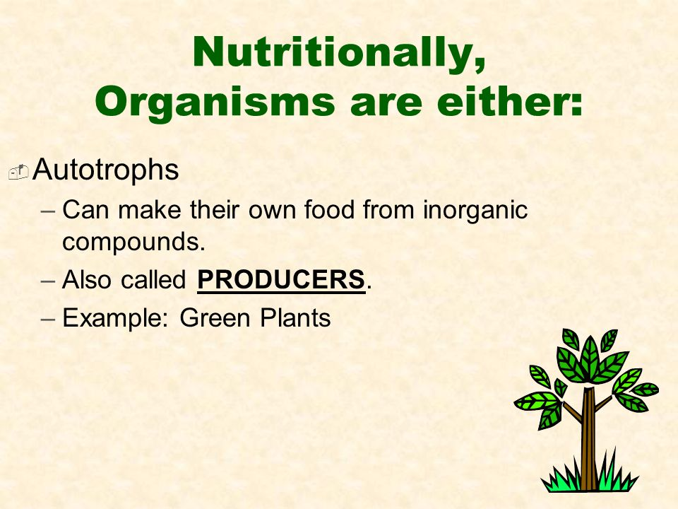 Nutritionally, Organisms are either:  Autotrophs –Can make their own food from inorganic compounds.