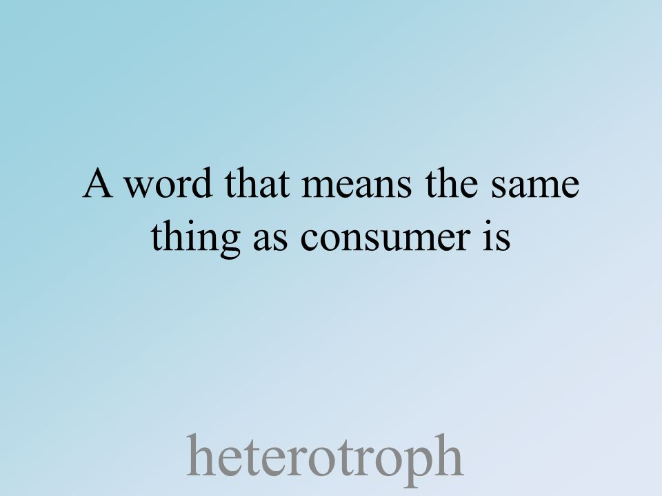 A word that means the same thing as consumer is heterotroph
