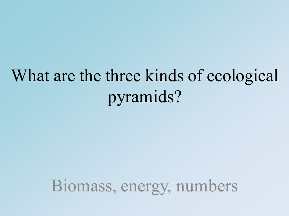 What are the three kinds of ecological pyramids Biomass, energy, numbers