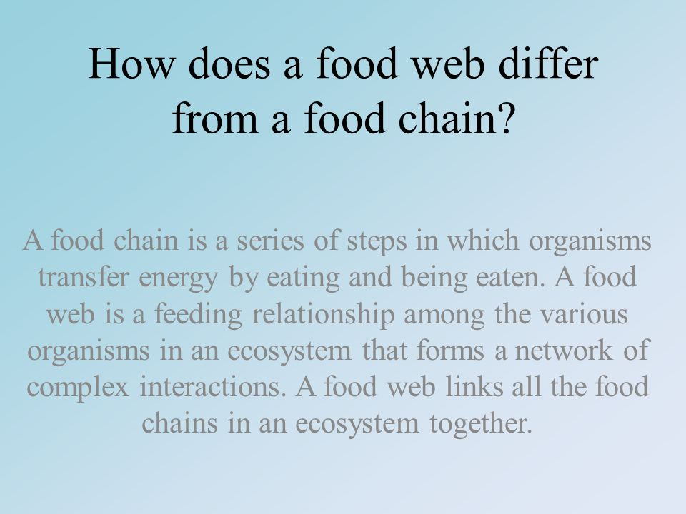 How does a food web differ from a food chain.