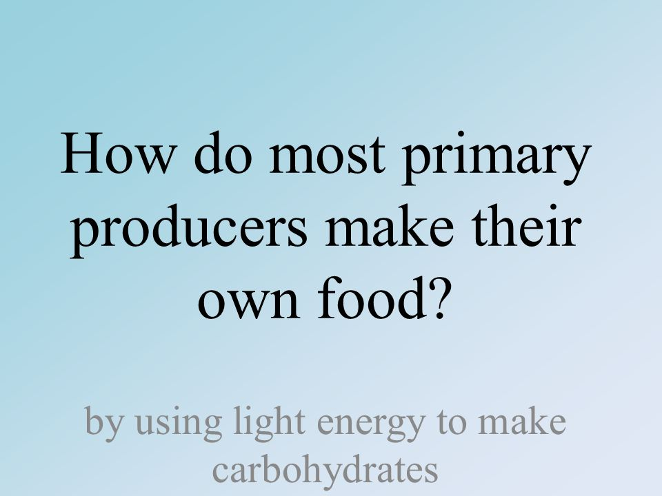 How do most primary producers make their own food by using light energy to make carbohydrates