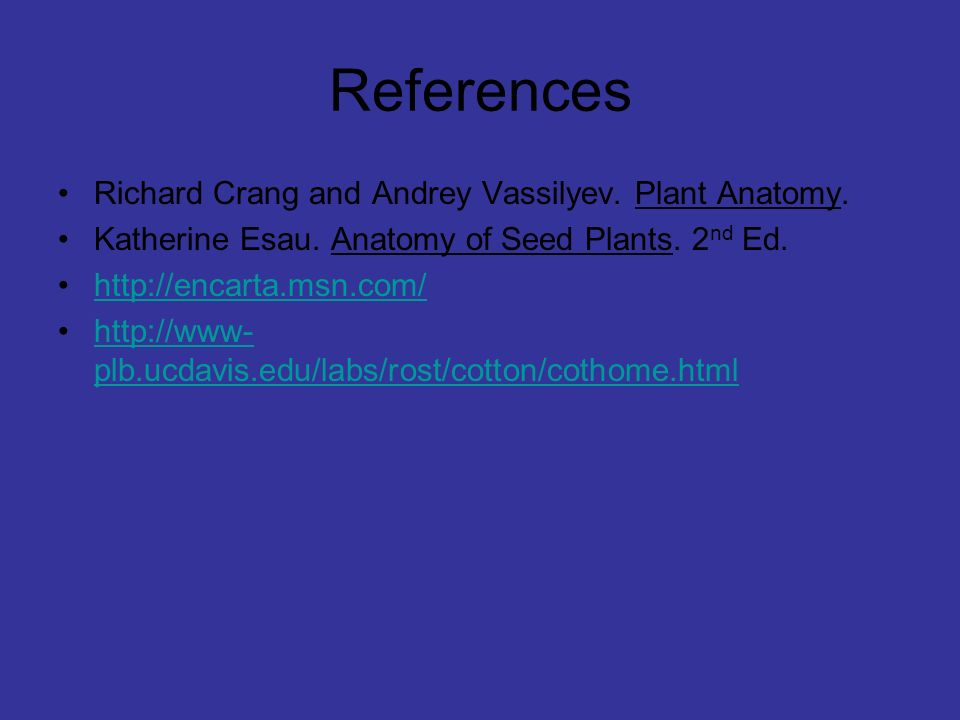 Awesome Anatomy Of Seed Plants Sketch - Anatomy And Physiology ...