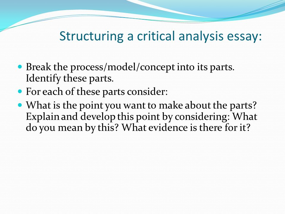 Critically Assess Essay