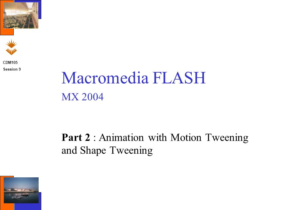 macromedia freehand mx keygen  pc