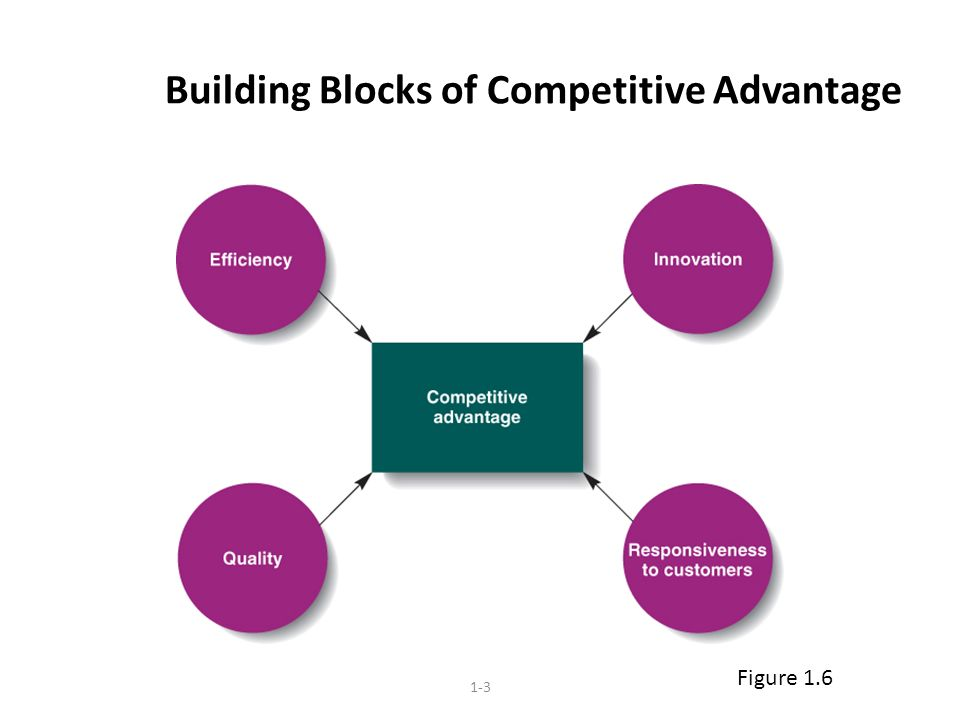 1-3 Building Blocks of Competitive Advantage Figure 1.6