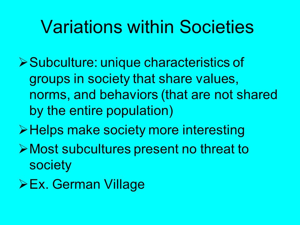 Variations within Societies  Subculture: unique characteristics of groups in society that share values, norms, and behaviors (that are not shared by the entire population)  Helps make society more interesting  Most subcultures present no threat to society  Ex.