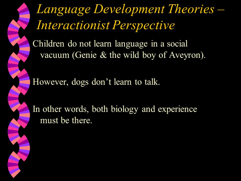 Language Development Theories – Interactionist Perspective Children do not learn language in a social vacuum (Genie & the wild boy of Aveyron).