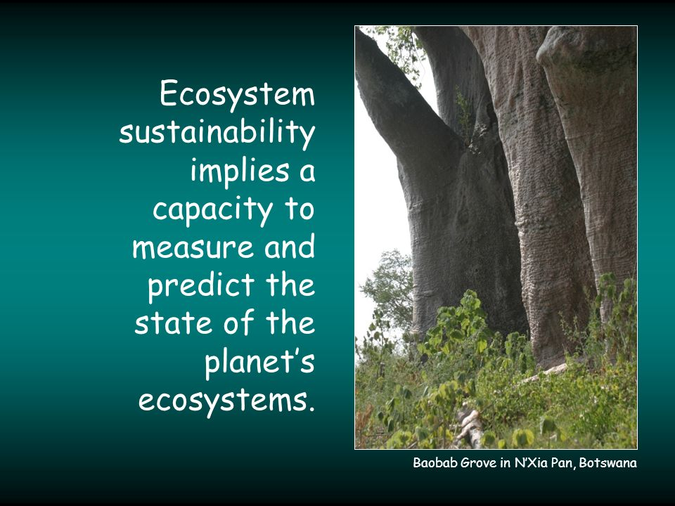 Ecosystem sustainability implies a capacity to measure and predict the state of the planet's ecosystems.