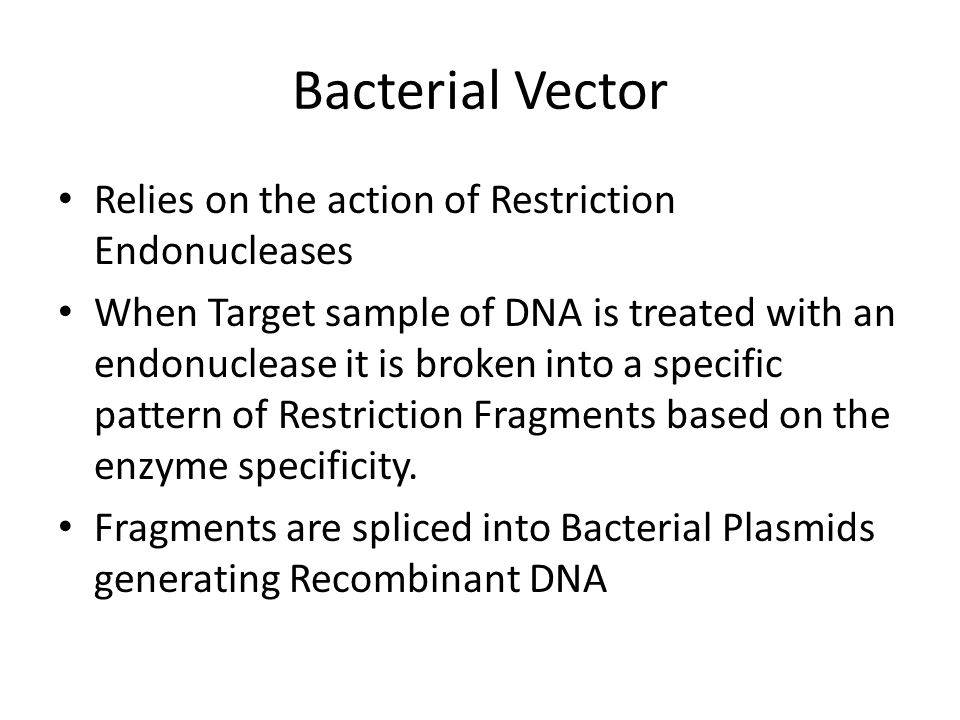 Bacterial Vector Relies on the action of Restriction Endonucleases When Target sample of DNA is treated with an endonuclease it is broken into a specific pattern of Restriction Fragments based on the enzyme specificity.