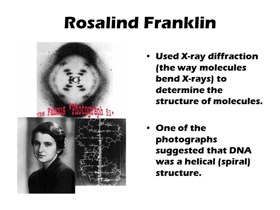 Rosalind Franklin Used X-ray diffraction (the way molecules bend X-rays) to determine the structure of molecules.