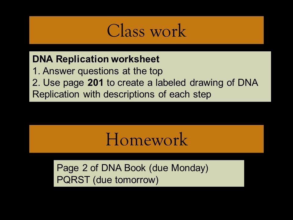 Dna structure worksheet 10 2