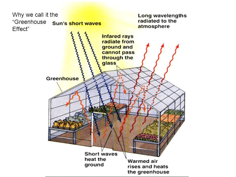 Why we call it the Greenhouse Effect