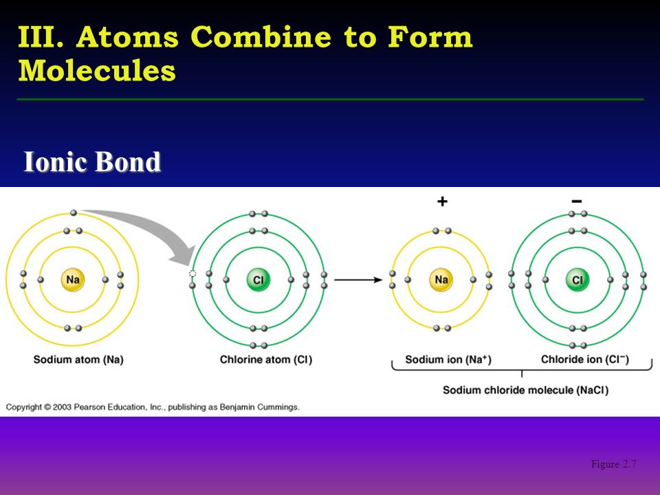 Lecture 3 THE CHEMISTRY OF LIVING THINGS. Table 2.1 III. Atoms ...