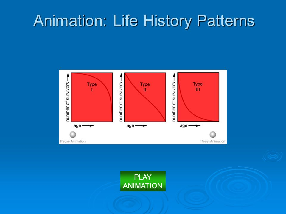 Animation: Life History Patterns PLAY ANIMATION