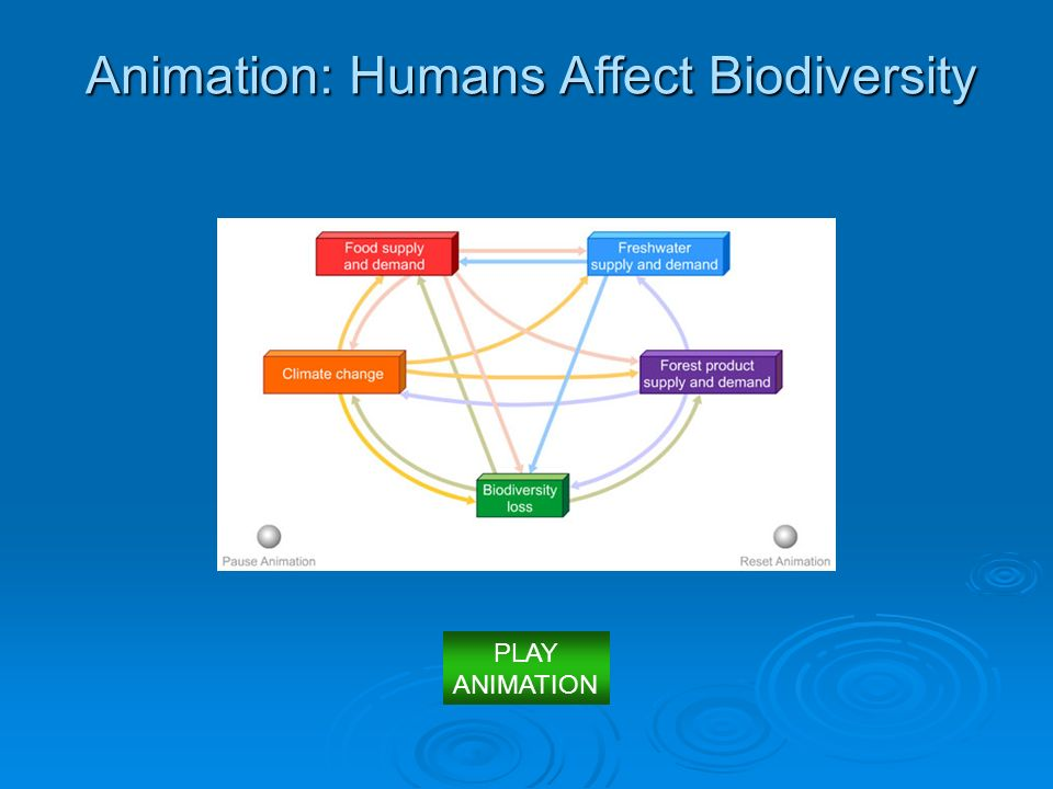 Animation: Humans Affect Biodiversity PLAY ANIMATION