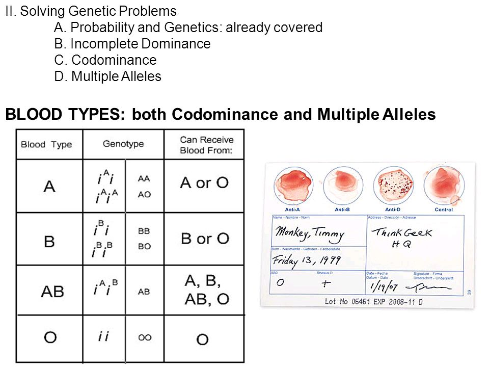 Solving genetic problems