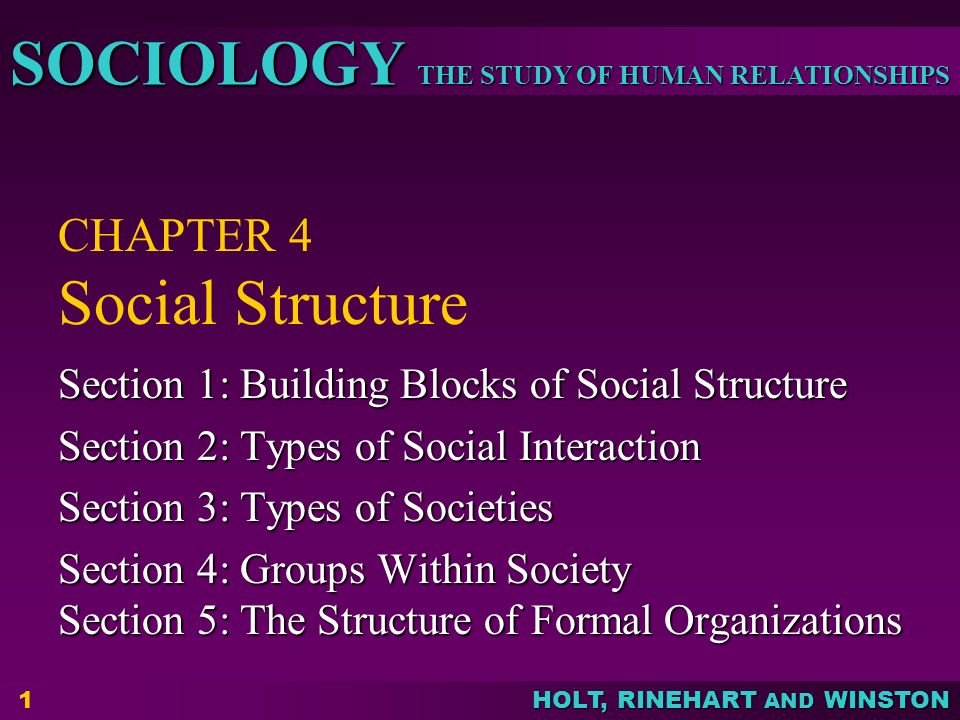 THE STUDY OF HUMAN RELATIONSHIPS SOCIOLOGY HOLT, RINEHART AND WINSTON 1 CHAPTER 4 Social Structure Section 1: Building Blocks of Social Structure Section 2: Types of Social Interaction Section 3: Types of Societies Section 4: Groups Within Society Section 5: The Structure of Formal Organizations