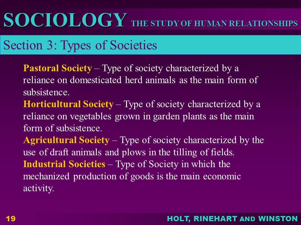 THE STUDY OF HUMAN RELATIONSHIPS SOCIOLOGY HOLT, RINEHART AND WINSTON 19 Pastoral Society – Type of society characterized by a reliance on domesticated herd animals as the main form of subsistence.